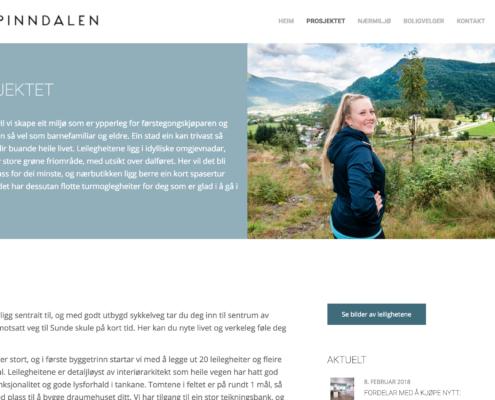 Prosjektinformasjon, Pinndalen